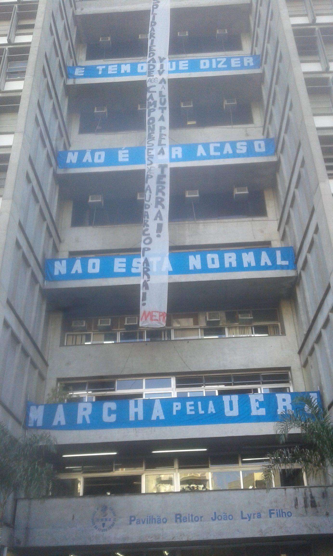 Pau D Arco Banner FERP